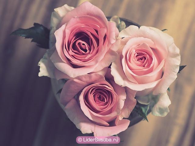 Розовая свадьба - 10 лет